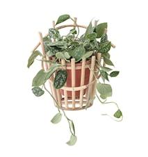 Kruka för Väggen Terrakotta/Bambu