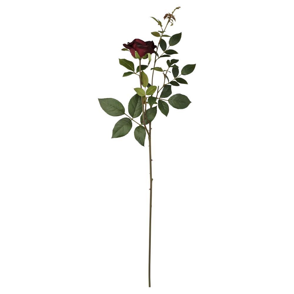 Flora rose H70 cm