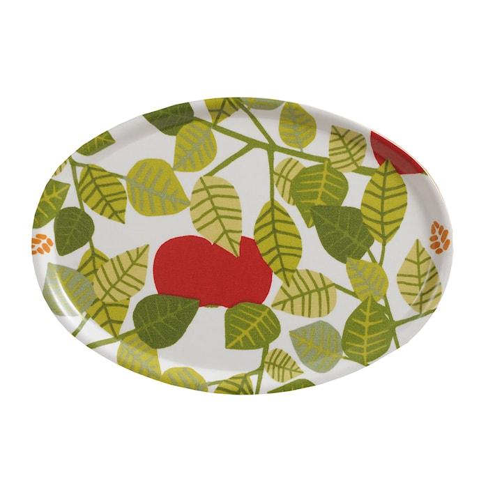 Apple Brett Grønn 31x22 cm