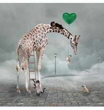 Barn Poster Giraffe 30x40 cm