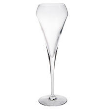 Champagneglass 20cl Open Up