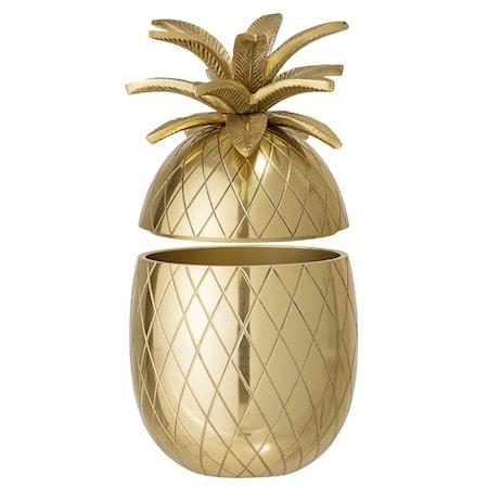 Ishink Pineapple