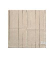 Puuvilla Servietti 2-pakkaus 40x40 cm