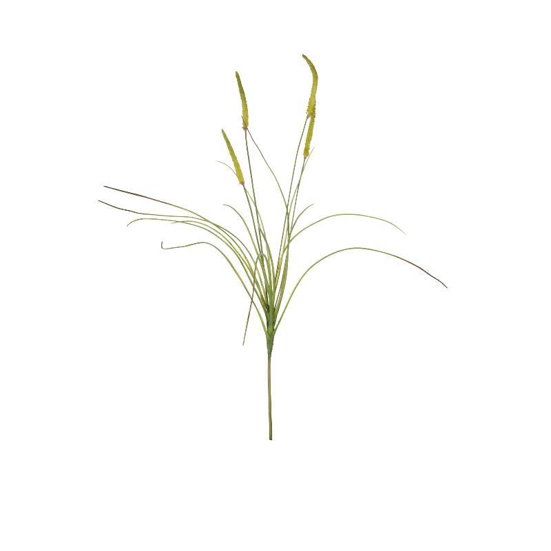 Flora grass H69 cm
