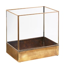 Display box, Plant, Antikmessing ,l: 21 cm, w: 30 cm, h: 30 cm