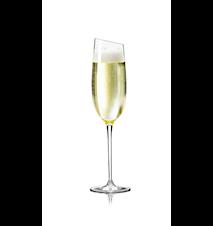 Vinglas Champagne