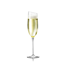 Champagneglass 20 cl