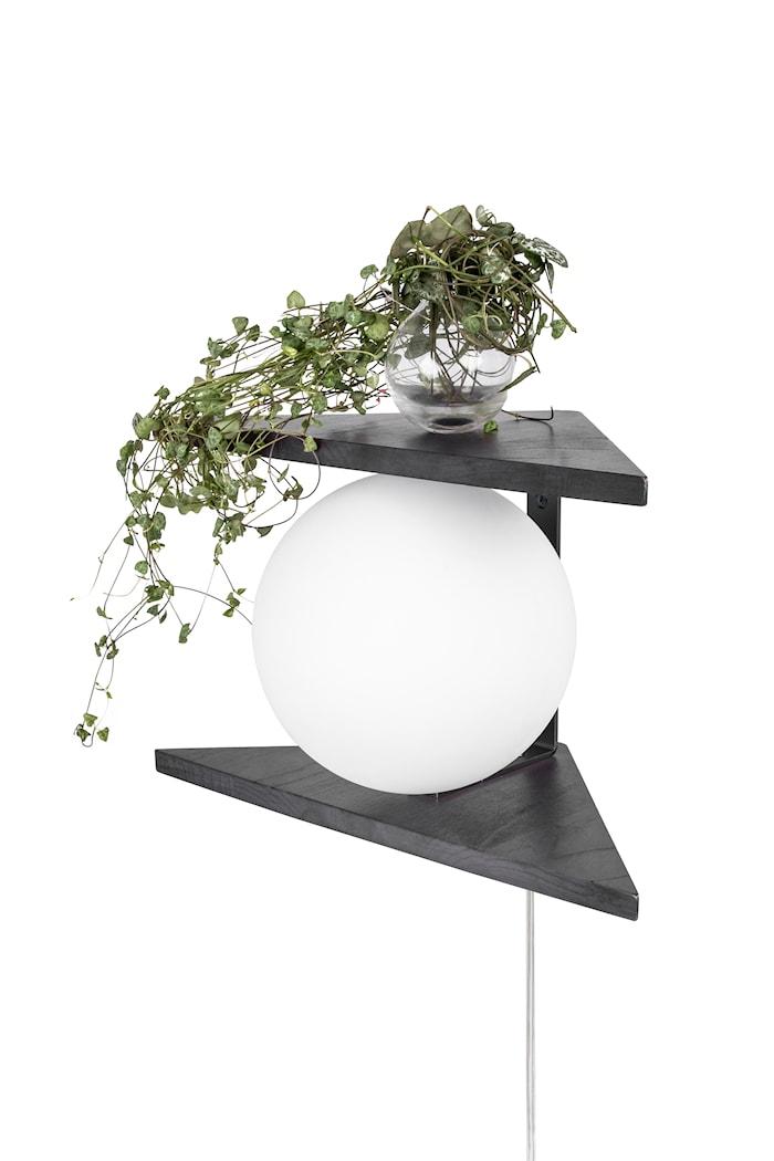 Vägglampa Angolo Trä Svart