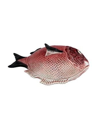 Fish Terrin 4,7L