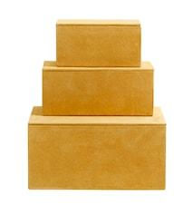 Box Mocka Nahka Keltainen 3 kpl setti