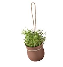 Grow-It Kruka Terracotta