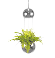 Kattolamppu Mini Planter Kromi
