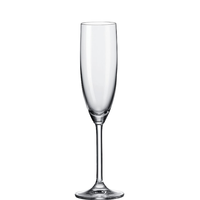 Daily Champagneglas 20 cl