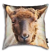 Sheep kuddfodral 50x50 cm