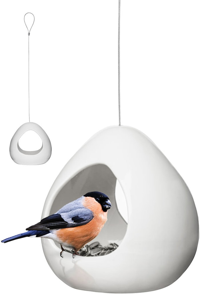 Birdy fuglebræt