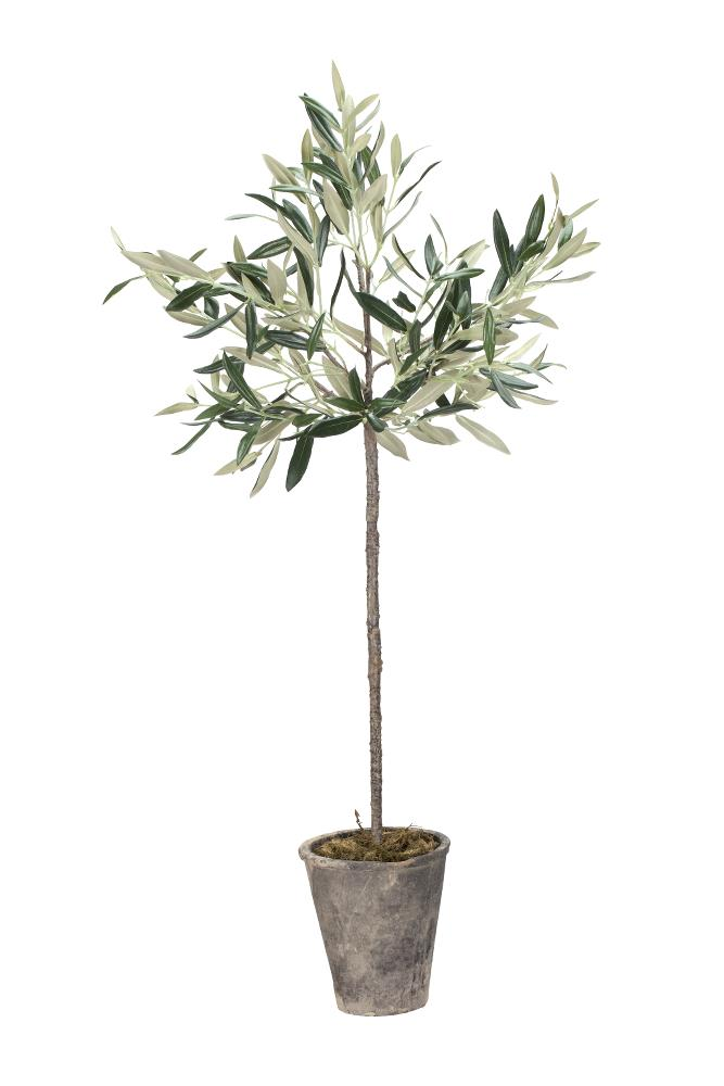 Flora olive tree H73 cm