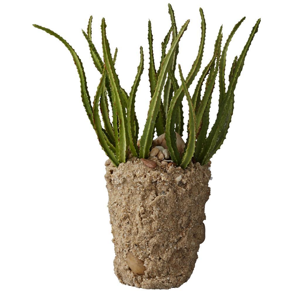 Flora cactus H24 cm