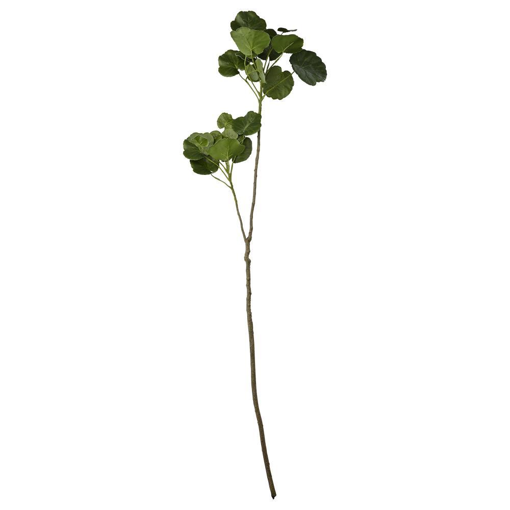 Flora begonia H110 cm