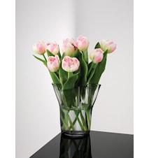 Tulip Vase Glass