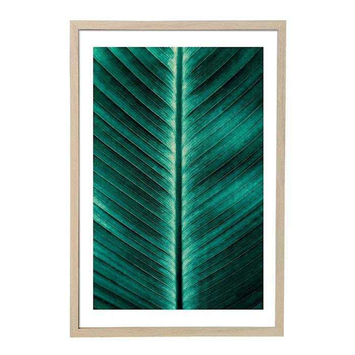 Poster Grön med Ram Natur