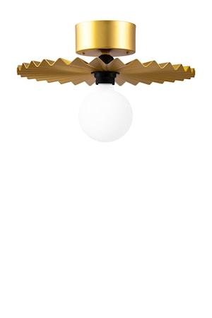 Plafond/Vägglampa Omega 35 Borstad Mässing