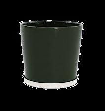 Basic Kruka Palm Grön 22 cm
