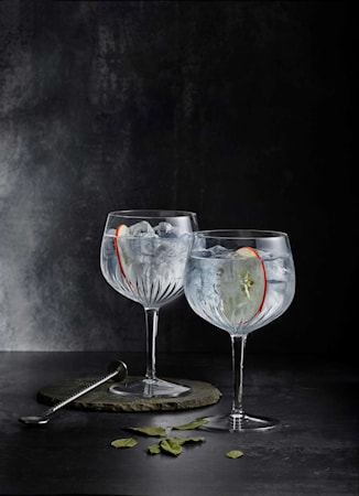 Mixology Gin & Tonic-lasi 80 cl 4-pakkaus