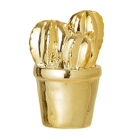 Kaktus Dekoration Guld