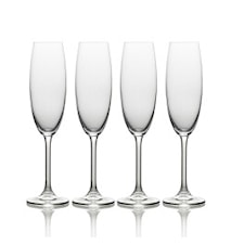 Champagneglas 18 Cl Set 4-pack