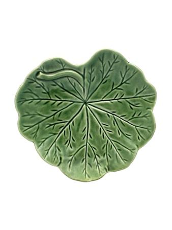 Geranium Leaf Grön 17 cm