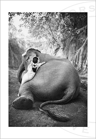 Adele & Ketut valokuvaprintti - 100 x 70