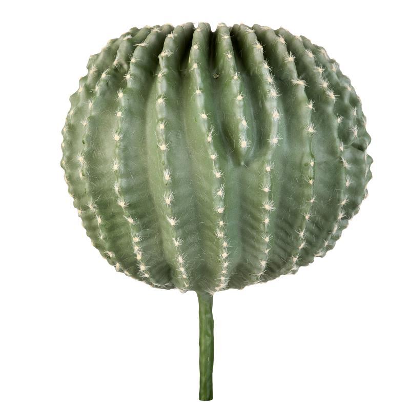 Flora cactus H40 cm