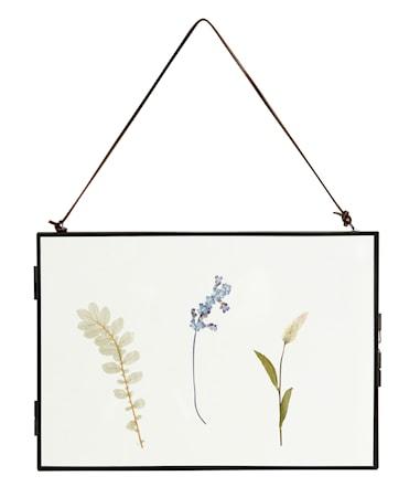 Meta Ramme med Tørkede blomster Svart Horizontal