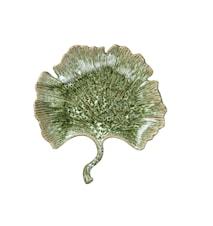 Lautanen Ginkgo, vihreä