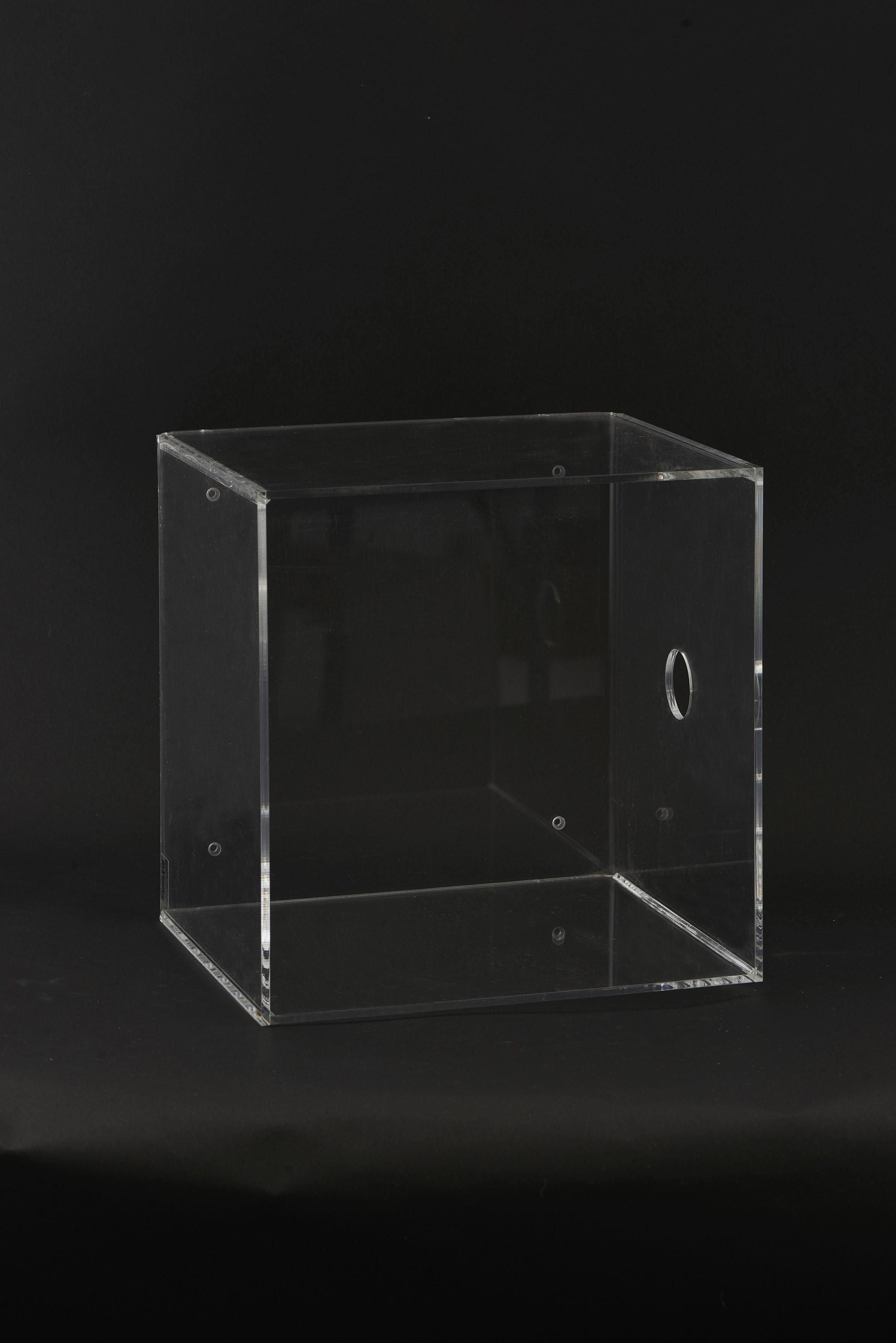 Vägglåda Plexi 30x25x30 cm – Klar