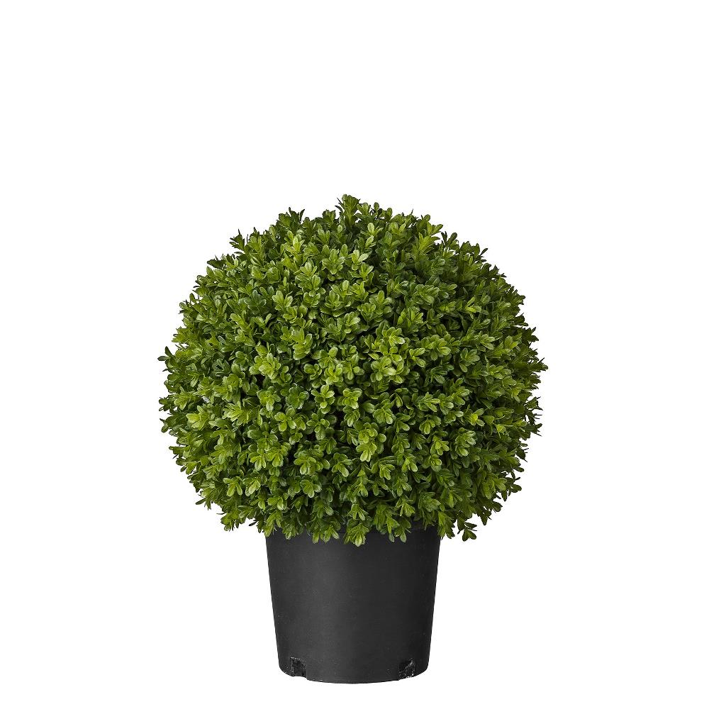 Flora boxwood H47 cm