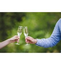 Champagneglass 17 cl 4-pakk