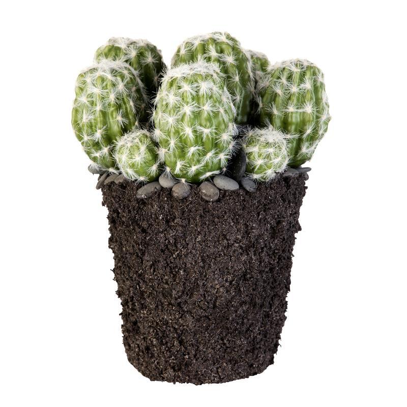Flora cactus H23 cm