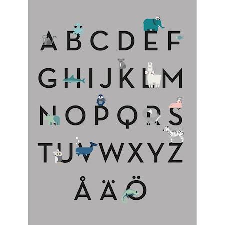 Barn Poster, ABC
