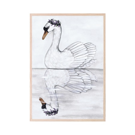 Poster Swan Reflection 30x40cm