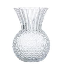 Vase Pine