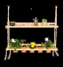 Hanging Garden Furu Grå
