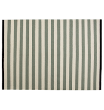 Nigella matta – Green/grey