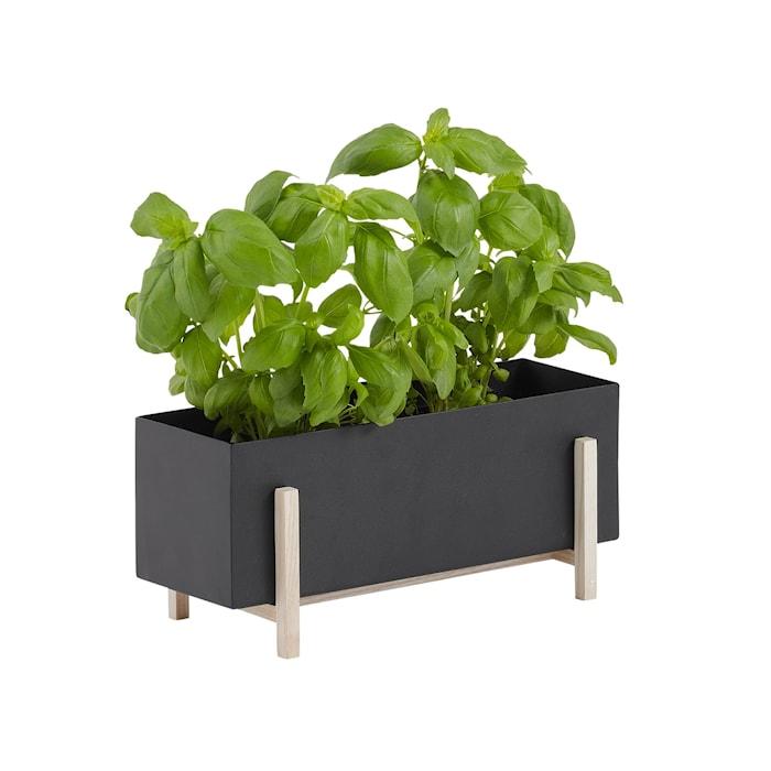 Botanic Herb Box