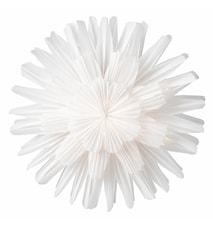 Julestjerne snøblomst hvit