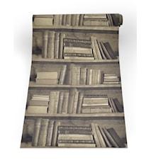 Bookshelf sepia tapet
