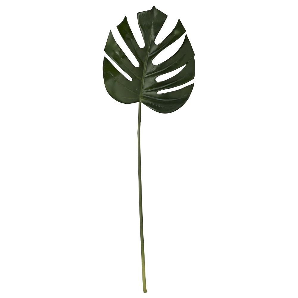 Flora monstera H85 cm