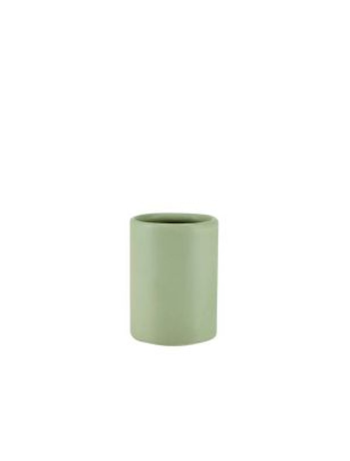 Tannbørstekrus Grønn 17 x 8 cm
