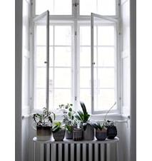 Krukke Grå Terrakotta 12 cm