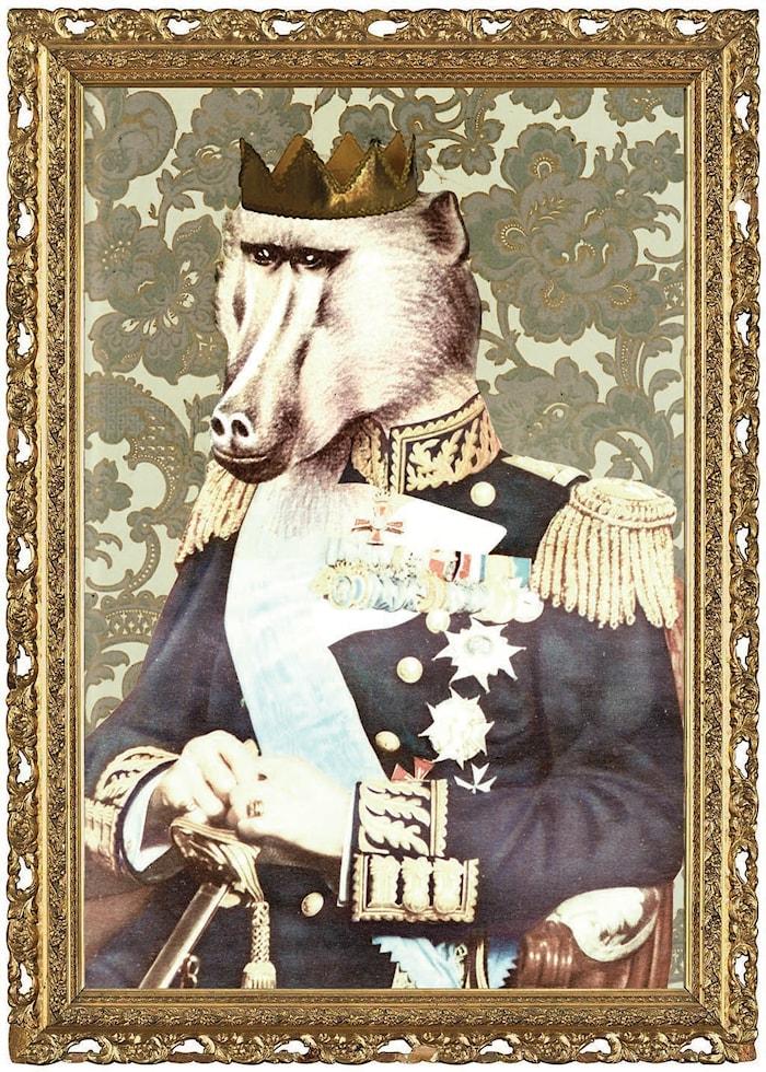 Kungen af Djungeln Poster 50x70 cm
